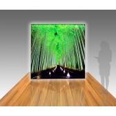 8ft Panoramic Lightbox Rental Display